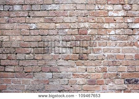 Vintage Australian Brick Wall 2