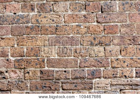 Vintage Australian Brick Wall