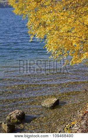 Autumnal Lake Shore With Blue Waves And Golden Leaves