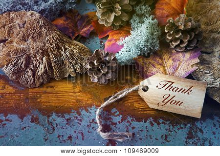 'thank You' On Wooden Tag
