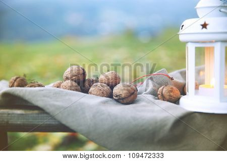 Lantern and walnuts on bench, on grass background
