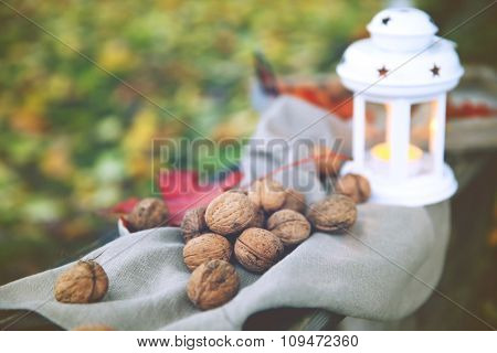 Fallen autumn leaves and walnuts on grass background