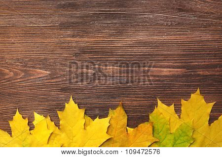 Autumn leaves as a frame are on wooden background, copy space