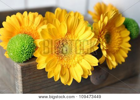 Beautiful yellow flowers in wooden box, close up