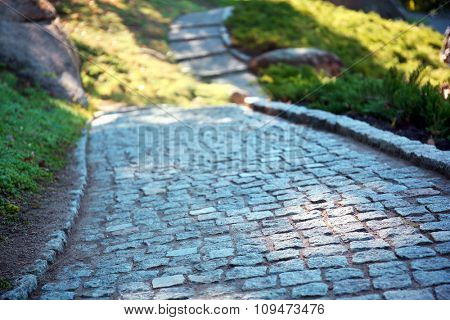 Cobblestone path in a park