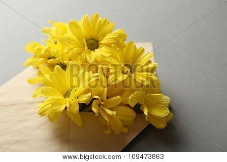 Yellow chrysanthemum in envelope on grey background