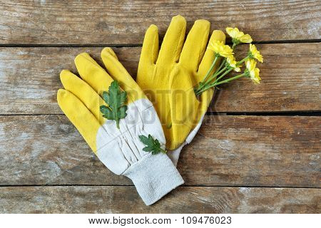 Yellow garden gloves and flower on wooden background
