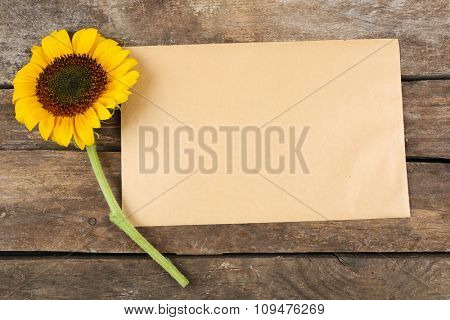 Blank card with beautiful sunflower on wooden background