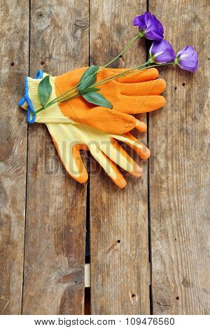Beautiful composition of flower and garden gloves on wooden background