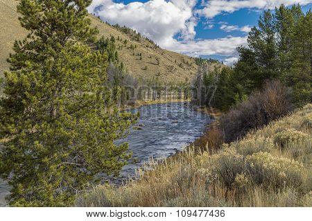 Glimpse Of Salmon River.