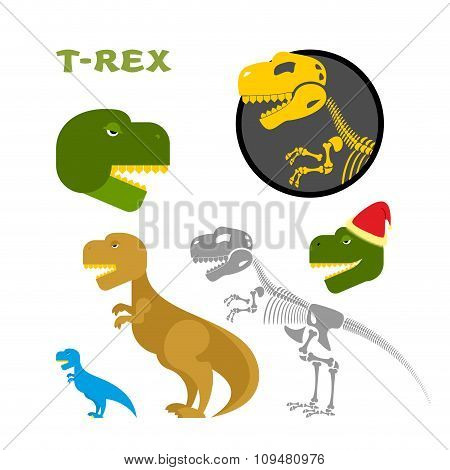 Tyrannosaurus Collection Of Items. Bones And The Skeleton. Head Of Prehistoric Raptor. Monster Of Ju