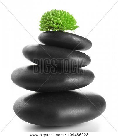 Black spa stones and green flower, isolated on white
