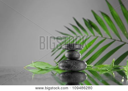 Spa stones and green palm branch  on grey background