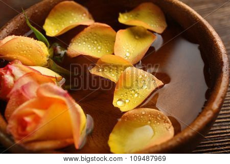 Beautiful orange rose and petals in a bowl of water, close-up