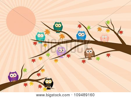 Owls On Tree In Autumn Season And Maple Leaf Fall With Sun Ray In Background. Vector Illustration Fl