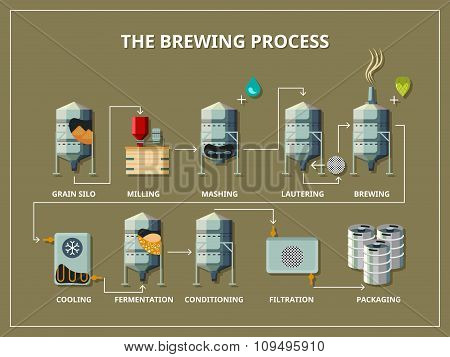 Brewery process infographic in flat style
