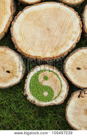 Tree stumps on the grass with green ying yang symbol.