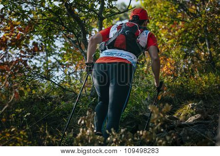 female athlete runner with nordic walking poles in forest climbs a mountain trail