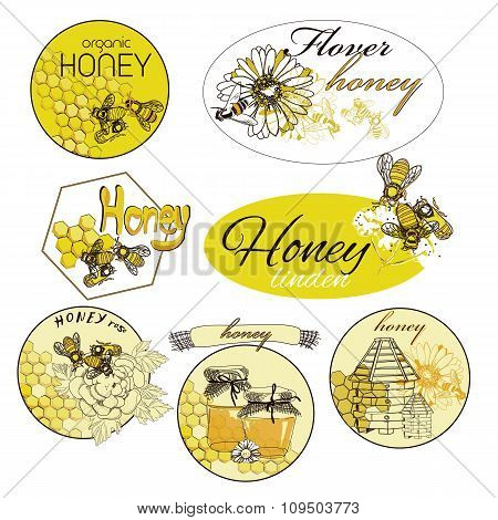 hand drawn decorative icons set with beehive wax cell flying bee