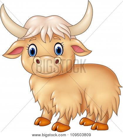Cartoon cute yak isolated on white background