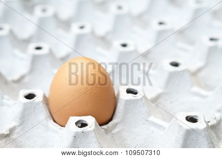 Egg On The Package