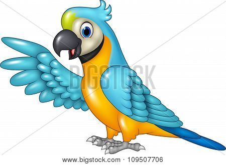Cartoon funny macaw presenting isolated on white background