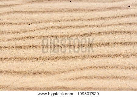 Background Of The Sinai Desert Sand