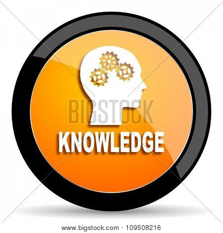 knowledge orange icon