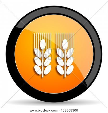 agricultural orange icon