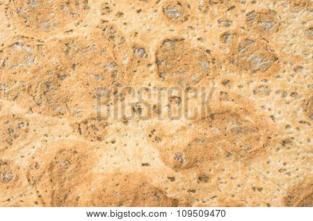 Thin Flatbread For Background