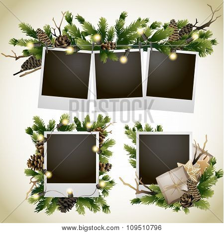 Christmas card with coniferous design