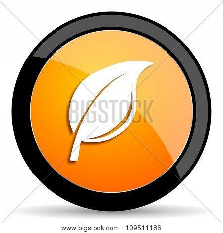 nature orange icon