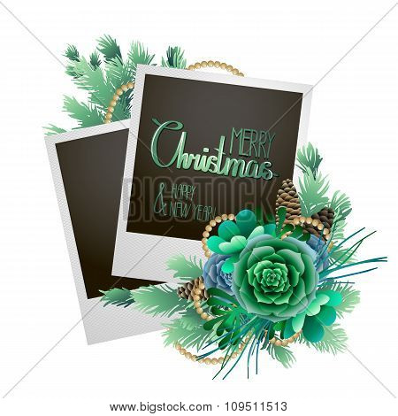 Christmas card with fir and succulents