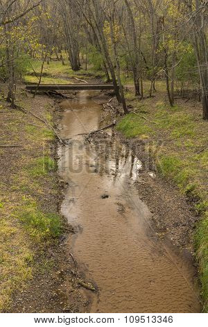 Creek In Woods Autumn
