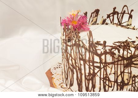cake with chocolate abstract mesh closeup on a white satin
