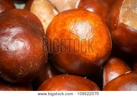 Fresh Chestnuts Macro