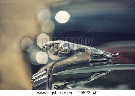 Sleza, Poland, August 15, 2015: Close Up On Old Vintage Jaguar Sing On Motorclassic Show On August 1