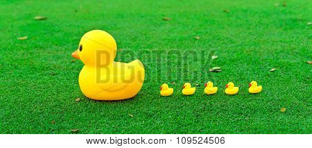Leadership Concept , Big Yellow Duck Leading Group