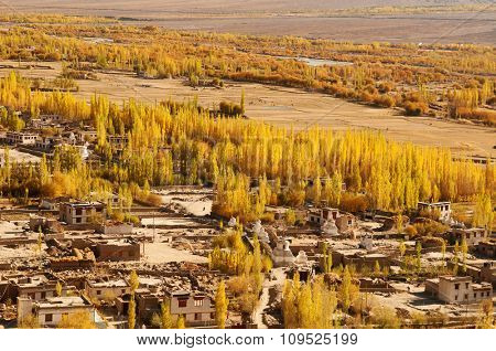 Beautiful scenery in small village at Leh during falls, Ladakh, India.