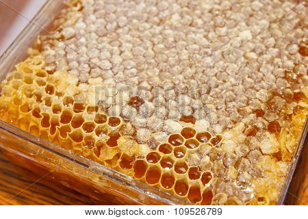 Plasic Boxes With Honey
