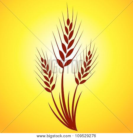 Solar autumn card with grass and ears of corn on an orange background. Perfect maps and icons for an