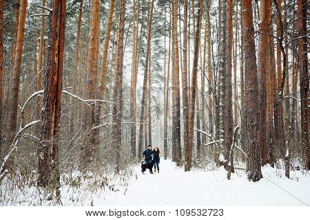 Young Couple With A Dog Having Fun In Winter