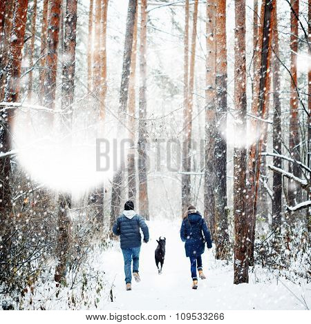 Young Family Having Fun With A Dog In Winter