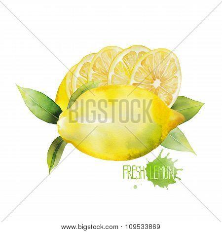 Watercolor lemon vignette