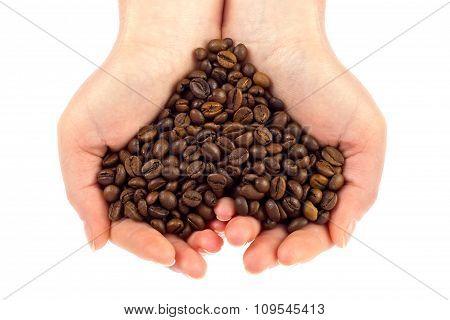 Heart Symbol Of Bean Coffee In Feminine Hand