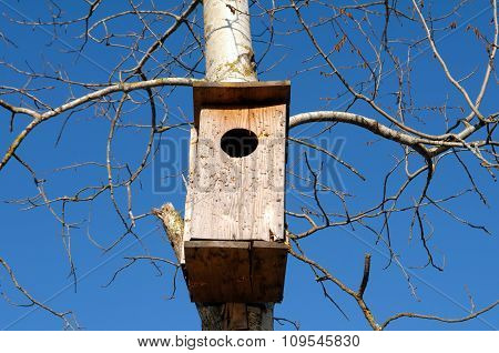 Birdhouse on the tree.
