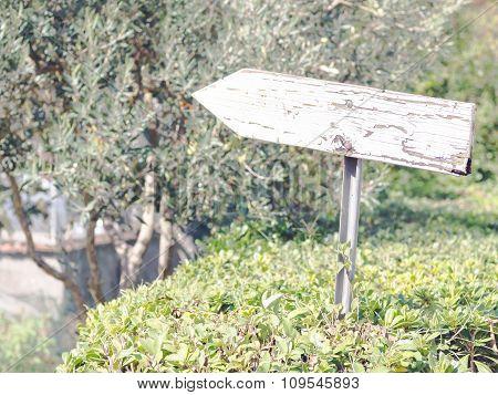 Entrance Signboard Hedges