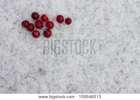 forest cranberries