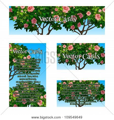 Four cards of the pattern a tree rose for your business needs