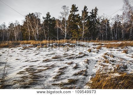 Landscape Of Field Under The Snow